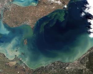 Toxic Algae Bloom in Lake Erie; Picture taken by NASA