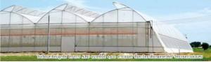 agro-farm