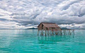 ים באינדונזיה