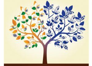 indo-israel tree