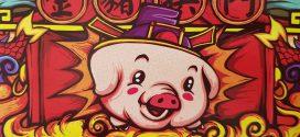 אוינק אוינק ובהצלחה – שנת החזיר מתקרבת