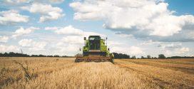 העיקר הוא האיכר, סין חוזרת לשורשיה החקלאיים