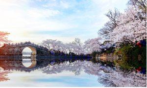 Wuxi yuantouzhu park