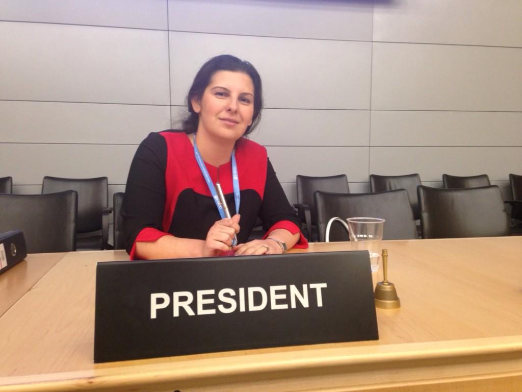 ריטה גולשטיין-גלפרין, הישראלית הראשונה לעמוד בראש ועדה ב-OECD