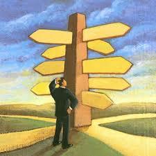 צומת דרכים: ייעוץ מדיניות ממוקד ולאומי או התרחבות גלובלית?