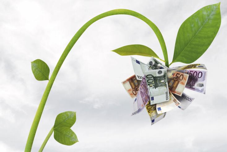 ה-OECD לא מאמין בדילמת האסיר - צמיחה או ירוק אלא צמיחה שעוזרת לסביבה