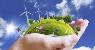 environment-1-612x336