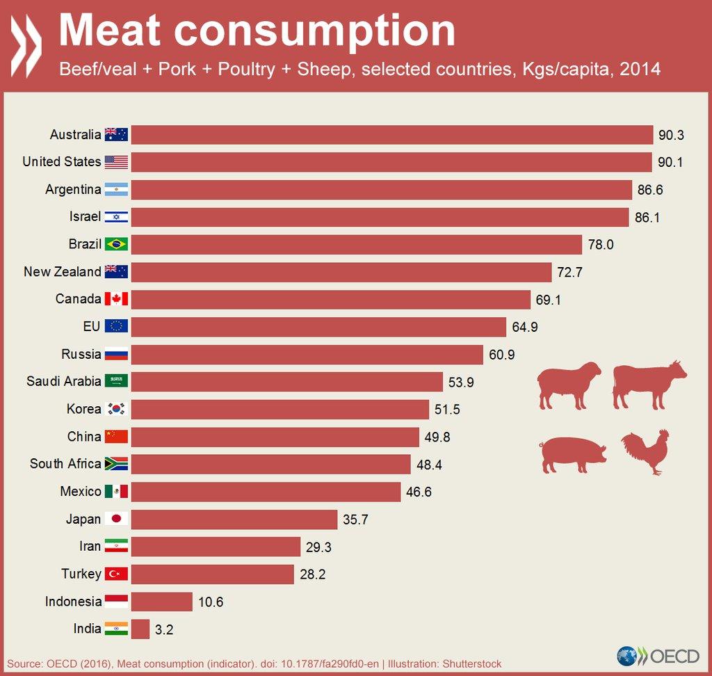 צריכת בשר (2)