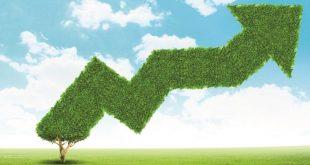 צמיחה ירוקה