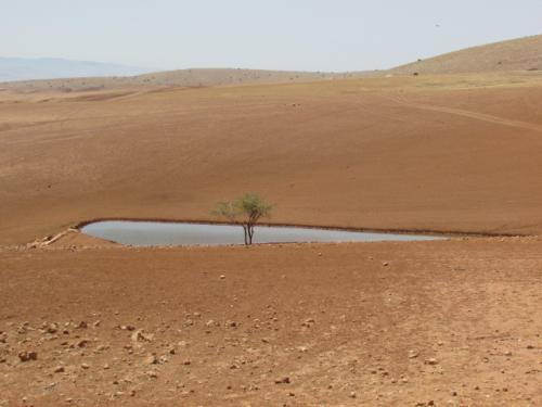 """""""ישראל הפכה להצלחה ניכרת בתחום המים, זאת למרות ואולי בגלל האתגרים הטבעיים העצומים"""""""