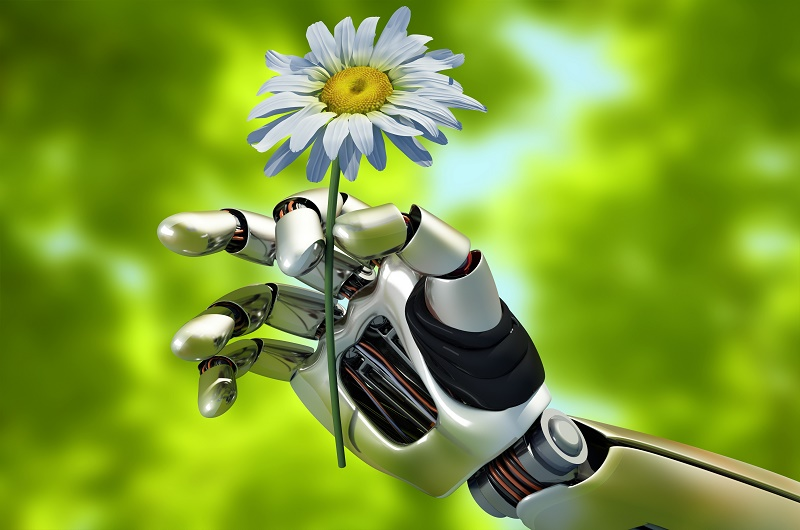 The mechanical arm and a flower.