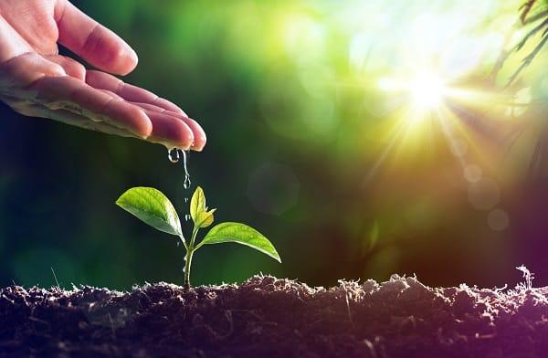 הזמנה להשתתף בפסגת חקלאות ישראל - קליפורניה